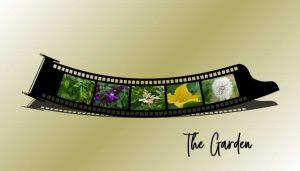 the-garden-filmstrip