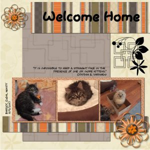 welcome-home-600