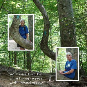 2020-8-6-bent-tree-hike-600