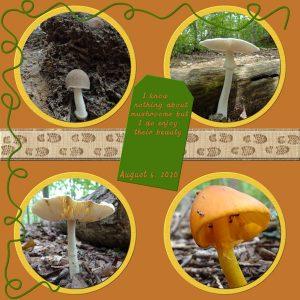 2020-8-6-template-lab10-08-mushroom-hike-600