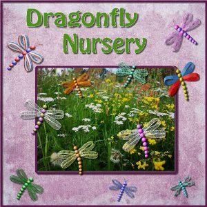 dragonfly-nursery-600