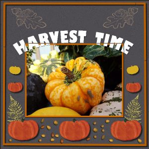 harvest-time-600