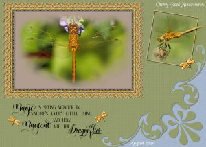 dragonfly-framed-quote-2