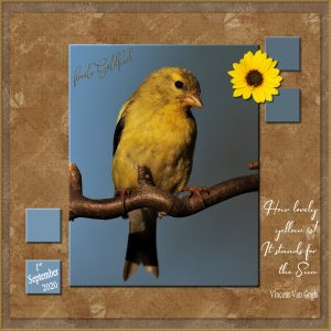 quote-goldfinch-sept