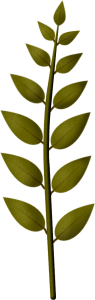 sgh-leaf-branch-13-02-2020