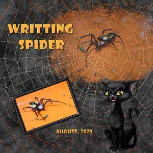 writting-spider-600-x-600