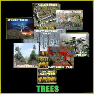 trees-scrapbookfinished-09032020