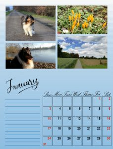 my-calendar-01-2021_600