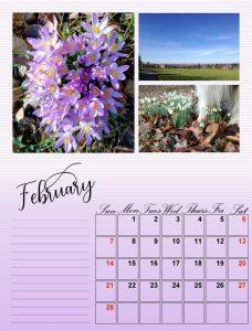 my-calendar-02-2021_600