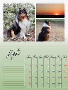 my-calendar-04-2021_600