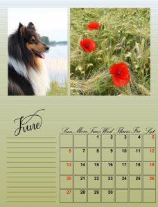 my-calendar-06-2021_600