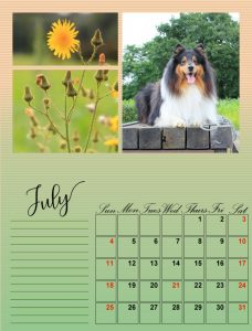 my-calendar-07-2021_600