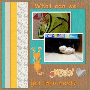 2020-11-19-penny-poppy-where-4040-11-sketch-challenge-600