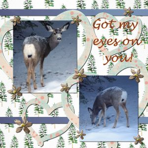 20201127deer-eyes-on-you-600