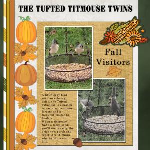 fall-visitors