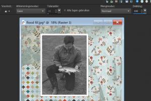 flood-fill-correct