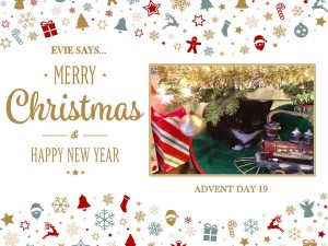 advent-day-19