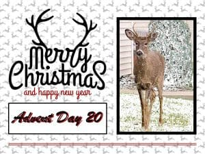 advent-day-20