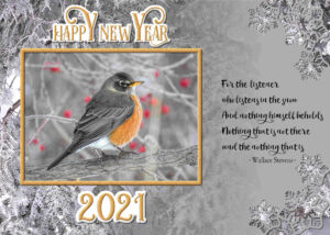 new-year-robin-snow-quote