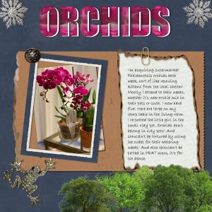 scavenger-hunt-orchids_scaled