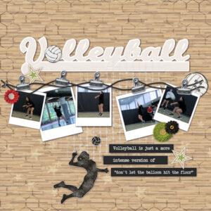 2017-volleyball-600