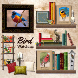 bird-watching-600