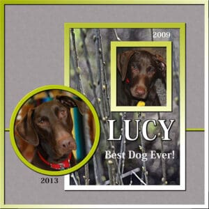 lucy-2009-2013sm