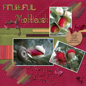 fruitful-mottlecah-600