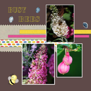 les-4-busy-bees-2