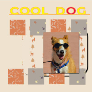project-5-cool-dog