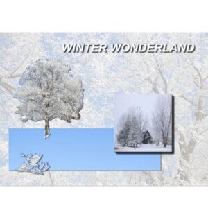 snow-scene600