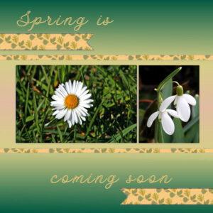 spring_w