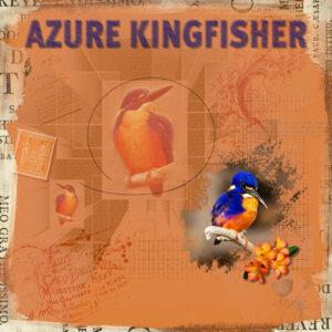 azure-kingfisher-resized
