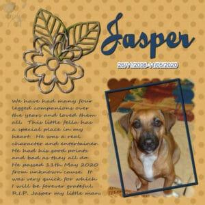 jasper-resized