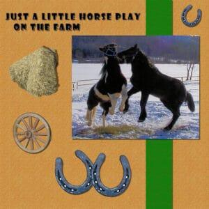 horse-play600