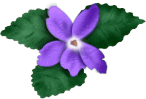 violet-2-sgh-28-05-2013