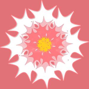 star-flower-sm