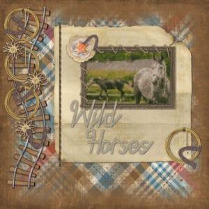 2021-wild-horses-600