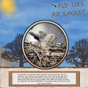 fly-like-an-eaglett-scaled-2