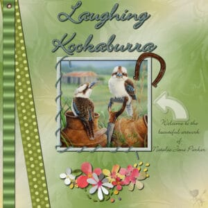 laughingkookaburra-resized