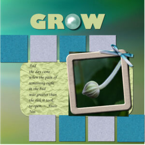 grow-project-5-600-2