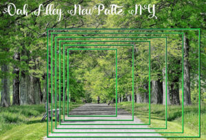 oak-alley-may-frames-challenge_scaled