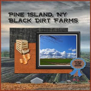 pineislandnyblackdirfarms_scaled