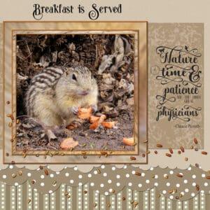 quote-ground-squirrel-breafast-is-served