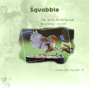 squabble-resized