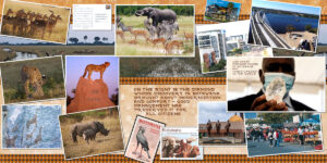 final-botswana_scaled