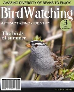 magazine-cover-birds
