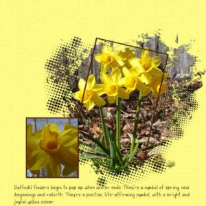 2021-3-22-daffodilstemplate-40-de-lady22-600