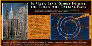 ghost-trees-maya-lin_desktop-2