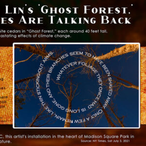 ghost-trees-maya-lin_rhp-600